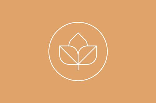 ejemplos-de-logotipos-uso-lineas-delgadas-seed