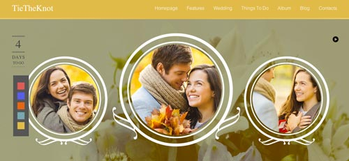 Temas WordPress para bodas Tie the Knot