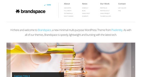 Temas WordPress Corporativos: Brandspace