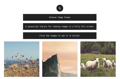 Javascript plugin para manipular imágenes: Intense Image Viewer
