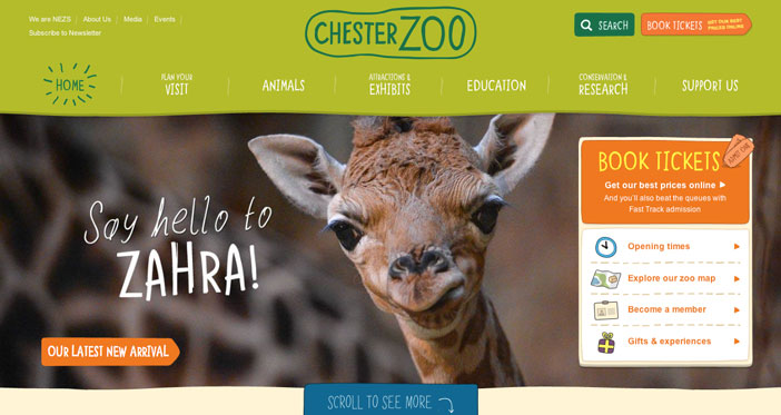 Examples of websites of Zoos and Aquariums: Chester Zoo