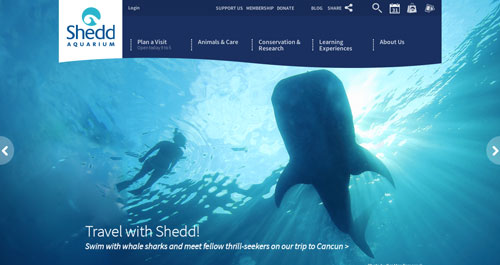 Examples of websites of Zoos and Aquariums: Shedd Aquarium