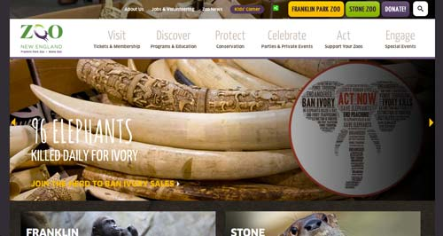 Examples of websites of Zoos and Aquariums: Zoo New England