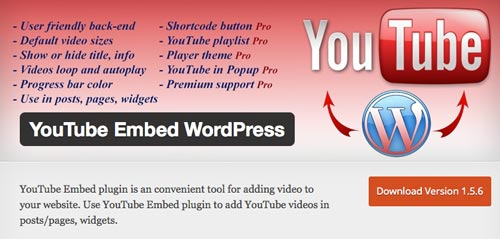 plugin-wordpress-gratuitos-optimizar-opciones-incrustacion-youtube-YoutubeEmbedWordpress